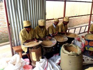 Workers at Muhanga Food Processing Industries, where a number of soy-based items are produced.